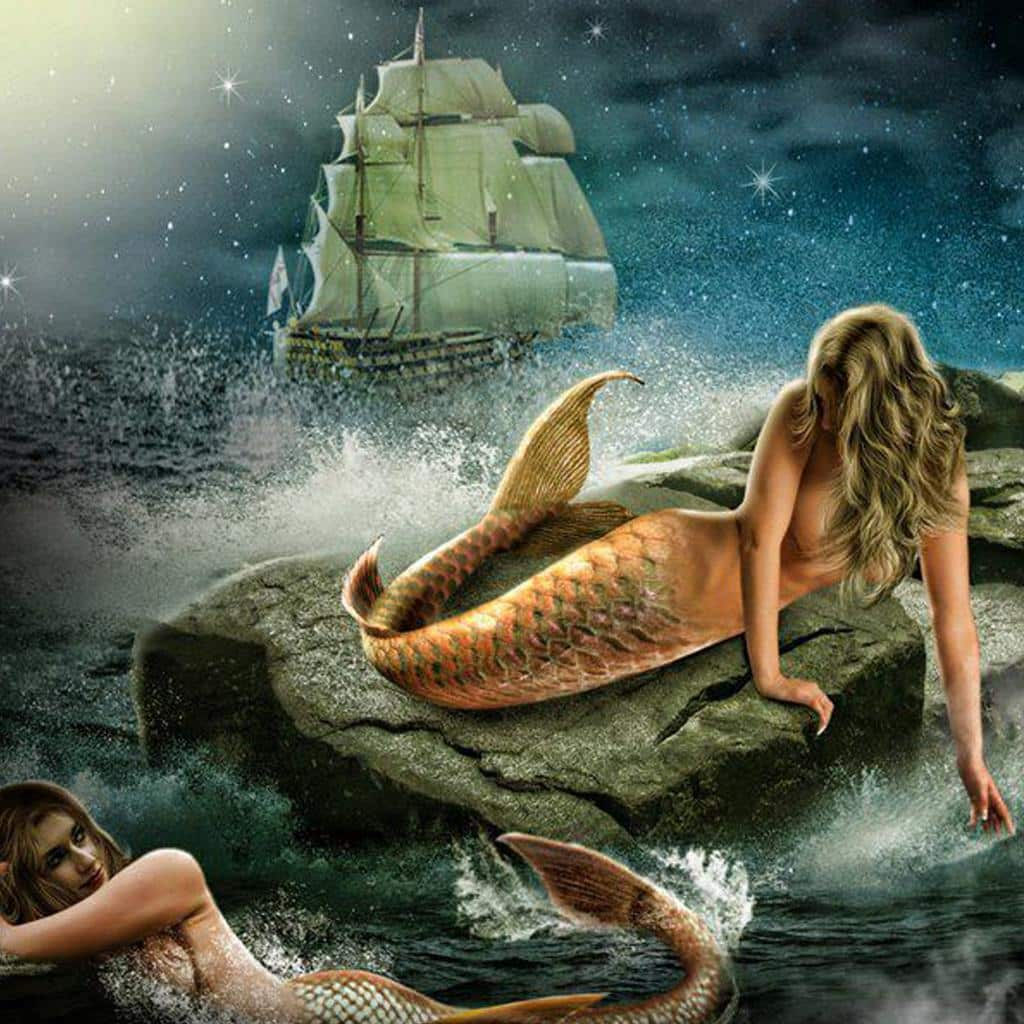 Mermaids sea creatures