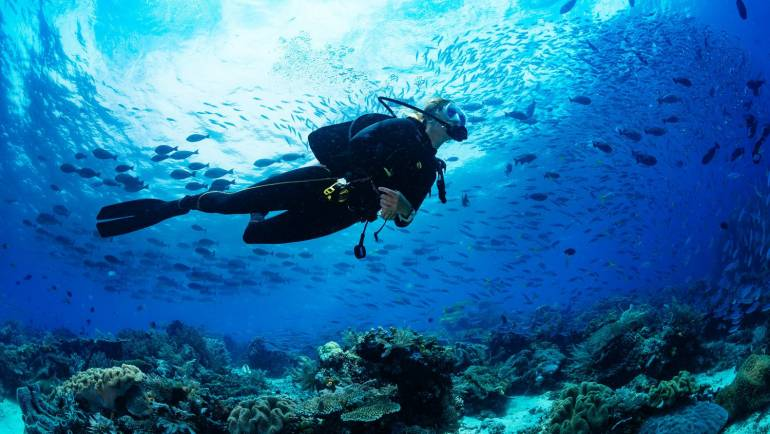 Diving paradise – Let's run through the top five hotspots